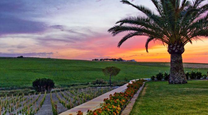 2014 Compañía de Vinos del Atlántico, Vinos Sin Ley Old Vine Monastrell, Murcia, Spanien