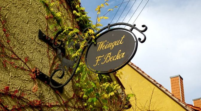 2013 Weingut Friedrich Becker, Spätburgunder B, Pfalz, Tyskland