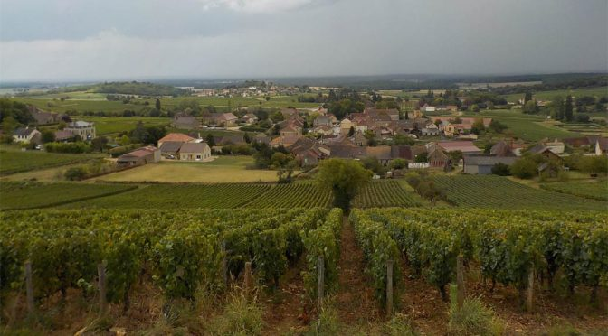 2015 Albert Sounit, Montagny 1. Cru Vieilles Vignes, Bourgogne, Frankrig