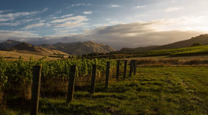 2014 Seresin Estate, Momo Pinot Noir, Marlborough, New Zealand