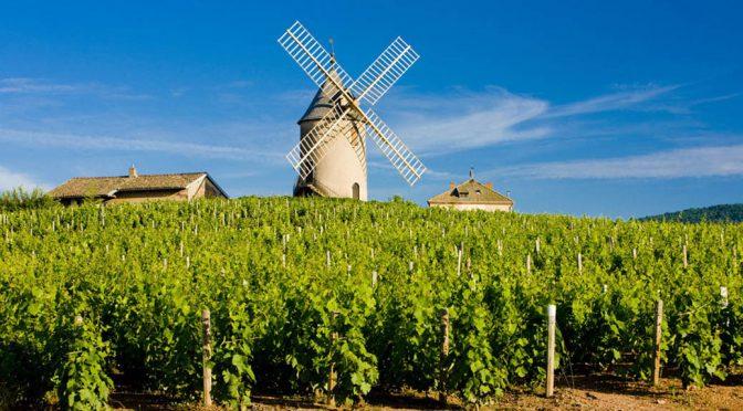 2011 Domaine Labruyère, Le Carquelin Moulin á Vent, Bourgogne, Frankrig