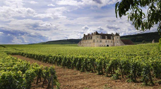 2014 Domaine Daniel Rion & Fils, Clos Vougeot Grand Cru Le Petit Mauperthuis, Bourgogne, Frankrig