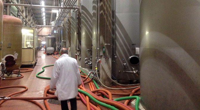 2017 Peter Mertes KG Weinkellerei, Street Food Wine Pinot Grigio, Sicilien, Italien