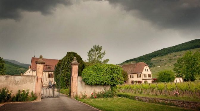 2016 Domaine Weinbach, Riesling Schlossberg Grand Cru Cuvée Ste Catherine, Alsace, Frankrig