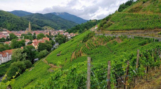 2015 Domaine Zind-Humbrecht, Rangen de Thann Clos Saint Urbain Riesling Grand Cru, Alsace, Frankrig