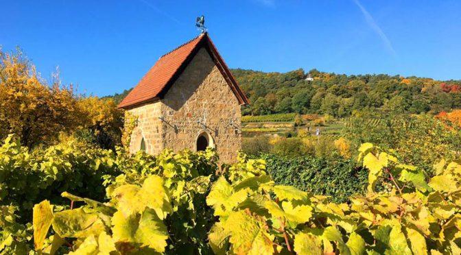 2014 Weingut Reichsrat von Buhl, Forster Pechstein Riesling GG, Pfalz, Tyskland
