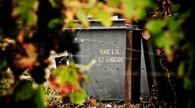 2011 Vilmart & Cie, Grand Cellier Rubis Premier Cru, Champagne, Frankrig