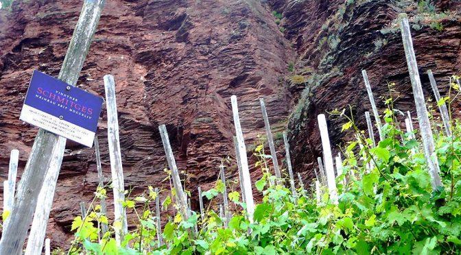 2017 Weingut Schmitges, Erdener Prälat Riesling GG, Mosel, Tyskland