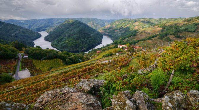 Vinho Verde … mini-test af de grønne vine fra Portugal