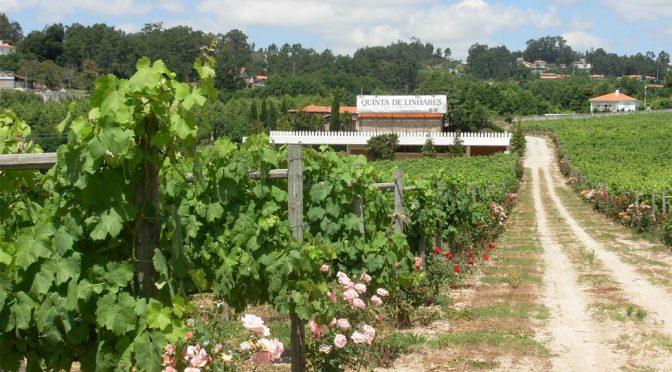 2016 Quinta de Linhares, Avesso Vinho Verde, Minho, Portugal