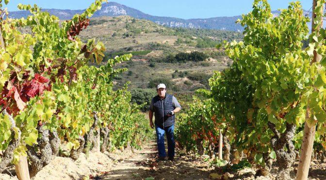 2012 Vinos de Benjamín Romeo, Predicador Tinto, Rioja, Spanien