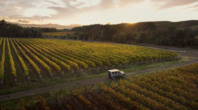 2017 Sacred Hill Vineyards, Chardonnay Reserve, Hawkes Bay, New Zealand