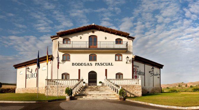 2015 Bodegas Pascual, Buró Vendimia Seleccionada, Ribera del Duero, Spanien