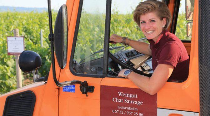 2013 Weingut Chat Sauvage, Jeder Zeit Pinot Noir, Rheingau, Tyskland