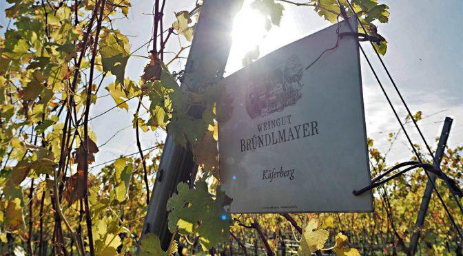 2002 Weingut Bründlmayer, Pinot Noir Cécile, Kamptal, Østrig