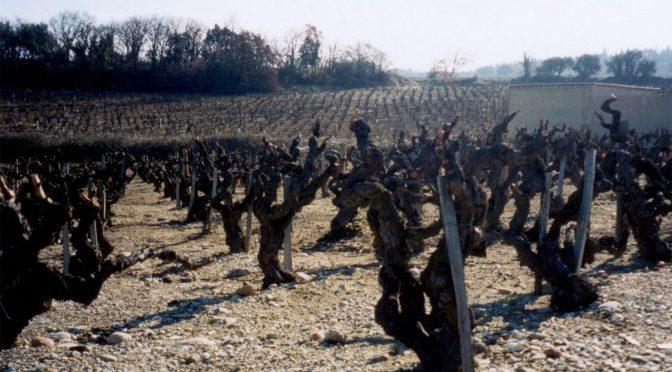2009 Domaine de la Janasse, Vin de Pays Principaute d'Orange Terre de Bussière, Rhône, Frankrig