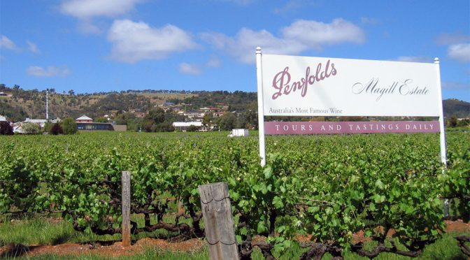 2009 Penfolds, Bin 23 Pinot Noir, Adelaide, Australien