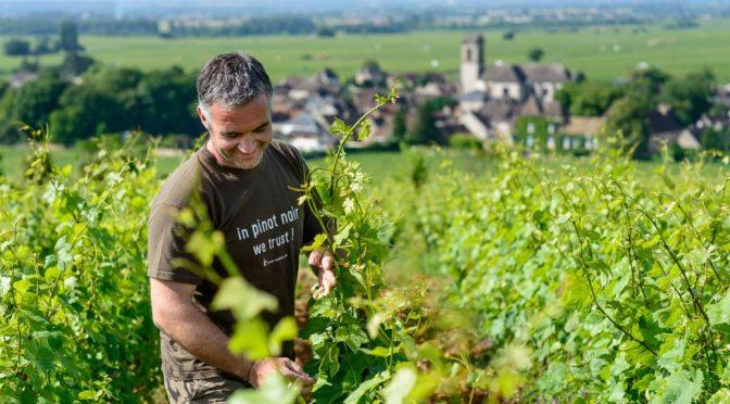 2009 Domaine Nicolas Rossignol, Beaune 1er Cru Les Reversées, Bourgogne, Frankrig