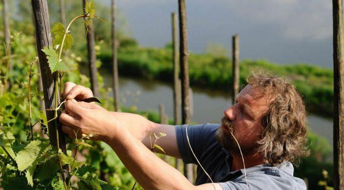 2010 Weingut Clemens Busch, Riesling vom Grauen Schiefer Trocken, Mosel, Tyskland