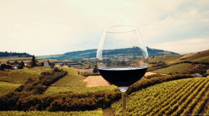 N.V. Progetto Vino, Grande Alberone Rosso, Lombardiet, Italien
