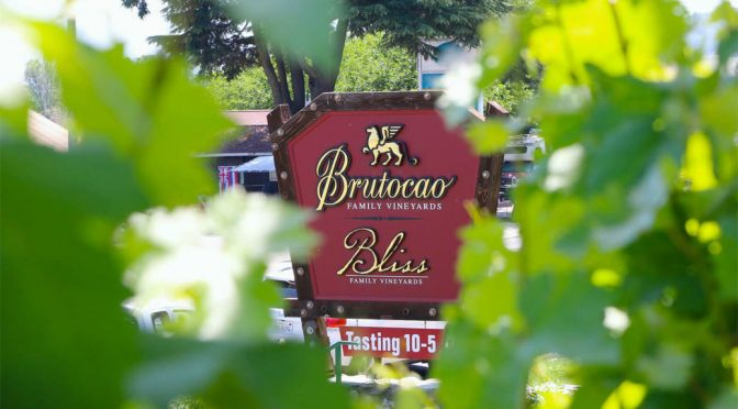 2008 Brutocao Cellars, Contento Vineyard Primitivo, Californien, USA