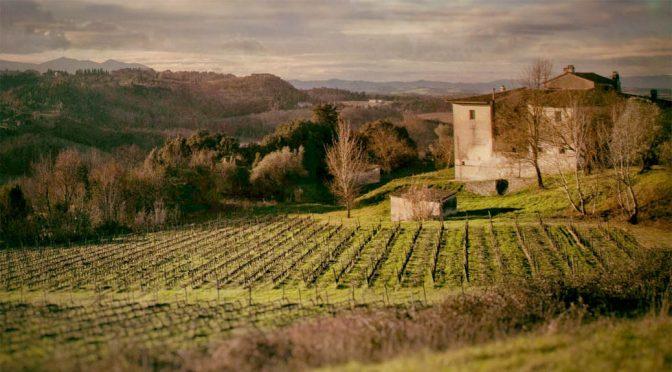 2004 Tenuta di Ghizzano, Veneroso IGT, Toscana, Italien