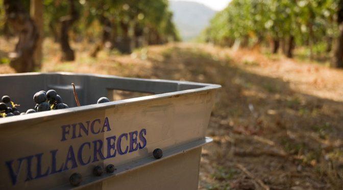 2004 Finca Villacreces, Finca Villacreces, Ribera del Duero, Spanien
