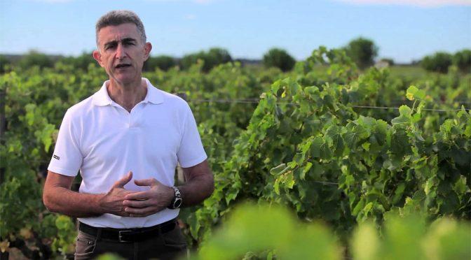 2010 Michel Gassier, Cercius Côtes du Rhône Vieilles Vignes, Rhône, Frankrig
