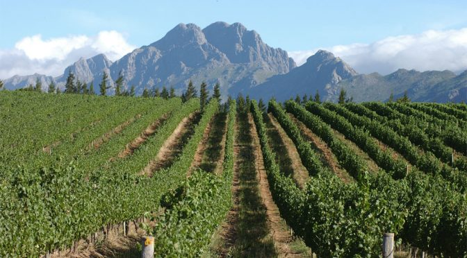 2011 Rustenberg Wines, Chardonnay, Stellenbosch, Sydafrika