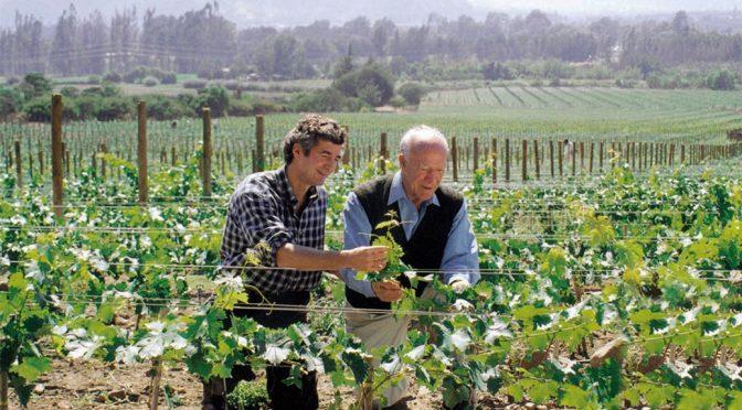 2012 Caliterra Winery, Carmenère Reserva, Colchagua Valley, Chile