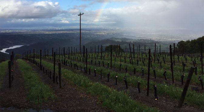2007 Mount Eden Vineyards, Domaine Eden Cabernet Sauvignon, Californien, USA