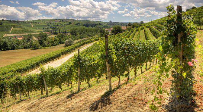 2001 Cascina Ebreo, Segreto, Piemonte, Italien