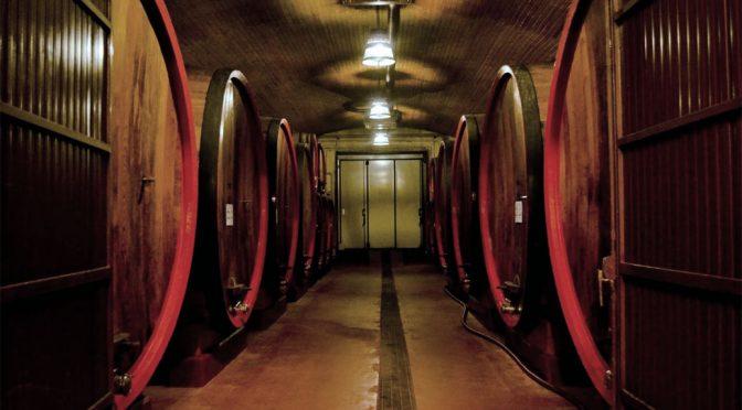 2013 Citra Vini, Palio Pecorino IGT, Abruzzo, Italien