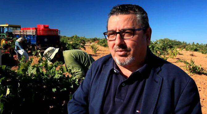 2009 Viñas del Cenit, Cenit, Tierra del Vino de Zamora, Spanien