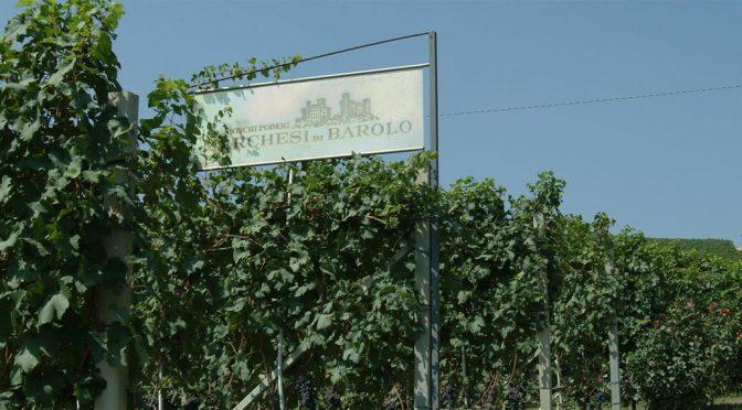 N.V. Marchesi di Barolo, Malvasia di Castelnuovo Don Bosco, Piemonte, Italien