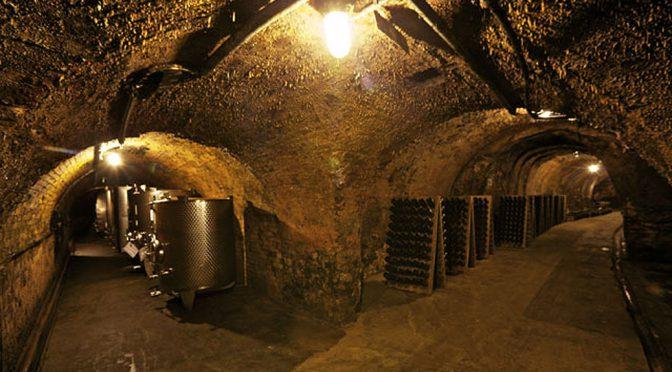 2008 Schloßweingut Graf Hardegg, Pinot Noir Steinbügel, Weinviertel, Østrig