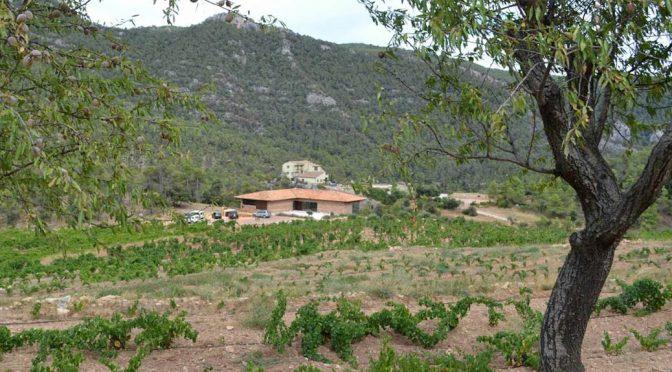 2012 Vinyes Domènech, Bancal del Bosc, Montsant, Spanien