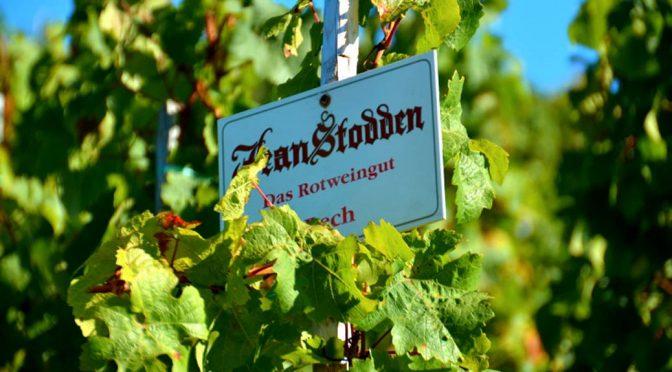 2009 Weingut Jean Stodden, Spätburgunder Recher Herrenberg, Ahr, Tyskland