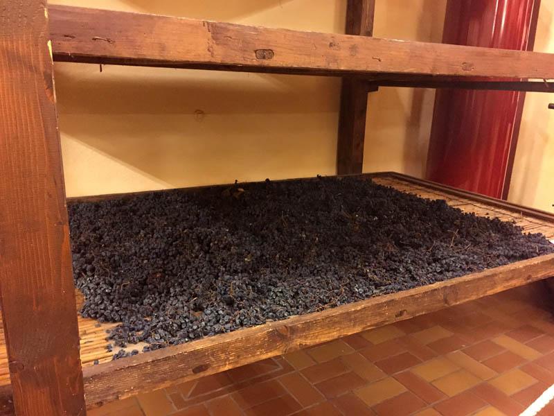 Zeni tørring druer