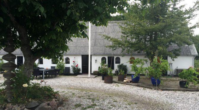 2014 Hedegårdens Vinavl, Bonde Bordvin Rondo & Leon Millot, Jylland, Danmark