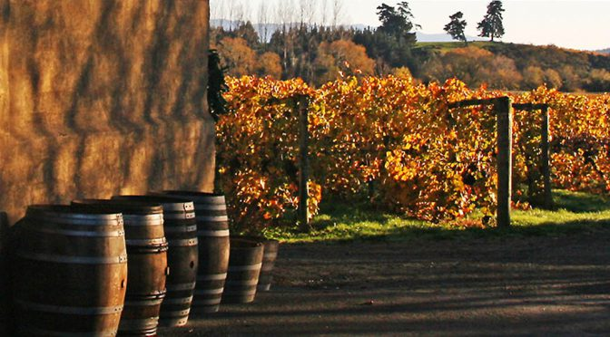 2012 Neudorf Vineyards, Tom's Block Pinot Noir, Nelson, New Zealand