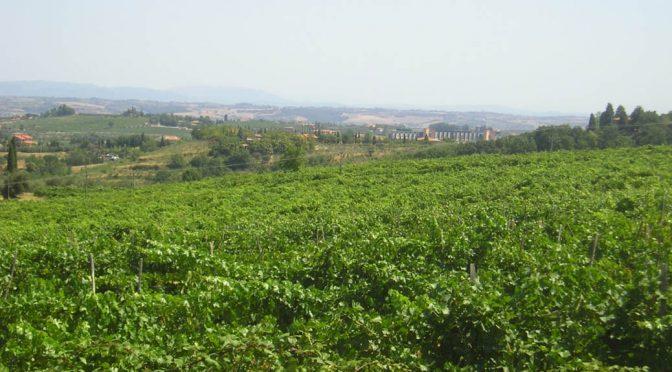 2011 Tiberini, Rosso di Montepulciano, Toscana, Italien