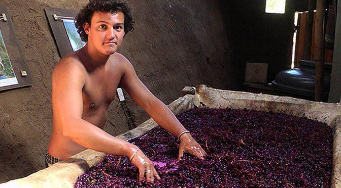 2012 Vinos Vernaculares, Tinajero, Quilpue, Chile