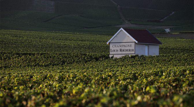 N.V. Louis Roederer, Brut Premier, Champagne, Frankrig