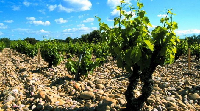 2006 Domaine Vieux du Lazaret, Châteauneuf-du-Pape Blanc, Rhône, Frankrig