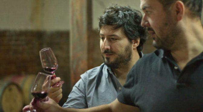 2013 Clos des Fous, Subsollum Pinot Noir, Cachapoal Valley, Chile
