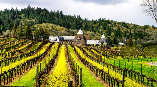 2013 Francis Ford Coppola Winery,Cabernet Sauvignon Diamond Collection, Californien, USA