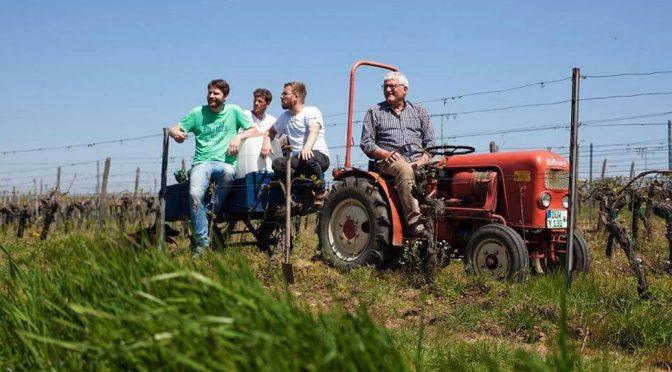 2015 Collective Z, Gemischter Was? Pfalz, Tyskland