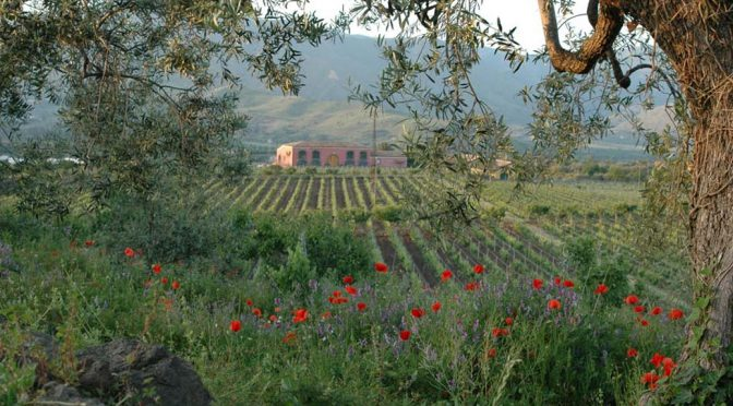 2014 Tenuta delle Terre Nere, Etna Rosso, Sicilien, Italien