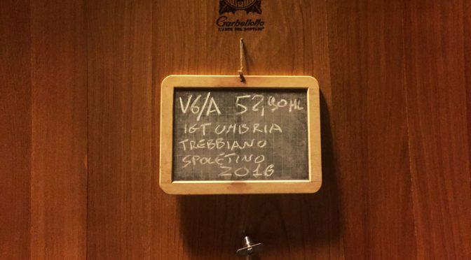 2015 Tenuta Bellafonte, Arnèto, Umbrien, Italien